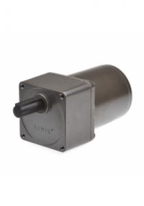 Gear motor YN70 8RPM